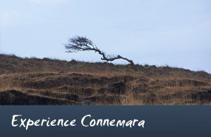 Experience Connemara