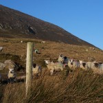 base of Tully mountain, Derryinver on the Connemara Loop and the Wild Atlantic way