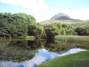 Summer Evening Talks @ the Connemara National Park @ Connemara National Park    Letterfrack   County Galway   Ireland